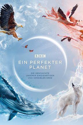 Poster: Ein perfekter Planet