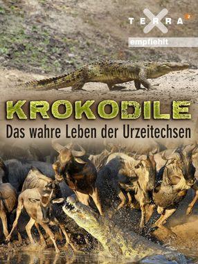 Poster: Krokodile - das wahre Leben der Urzeitechsen