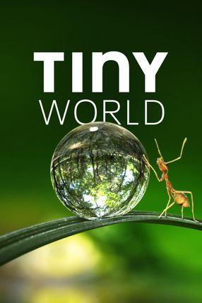 Poster: Tiny World