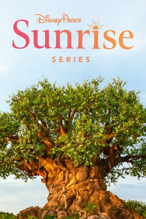 Poster: Disney Parks Sunrise Series