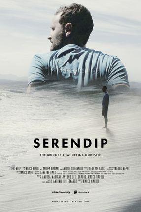 Poster: Serendip
