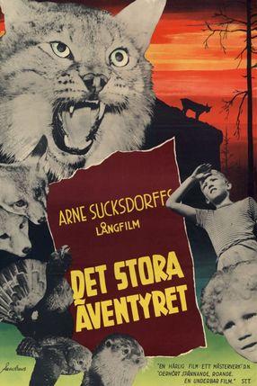 Poster: Det stora äventyret