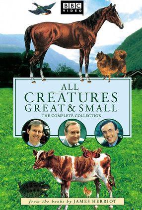 Poster: Der Doktor und das liebe Vieh