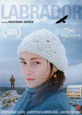 Poster: Labrador