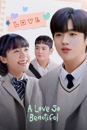 Poster: A Love So Beautiful