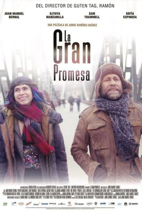 Poster: The Big Promise