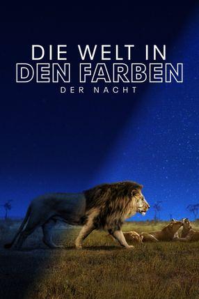 Poster: Die Welt in den Farben der Nacht