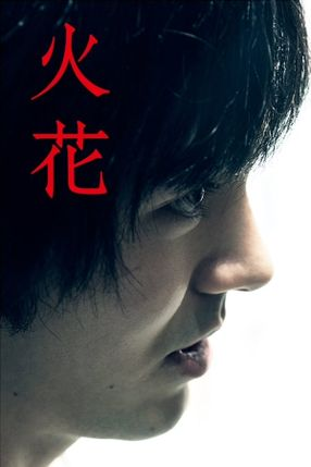 Poster: Hibana: Spark