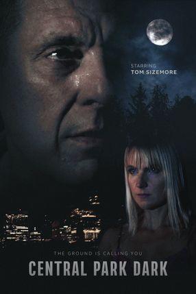 Poster: Central Park Dark