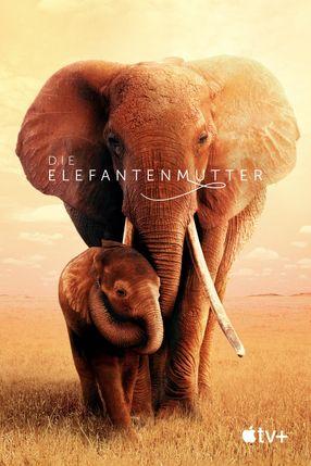 Poster: Die Elefantenmutter