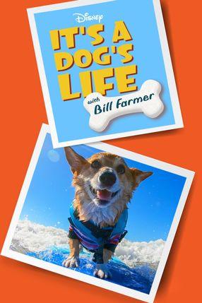 Poster: Ein Hundeleben mit Bill Farmer