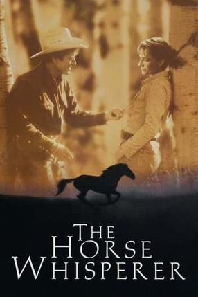 Poster: Der Pferdeflüsterer
