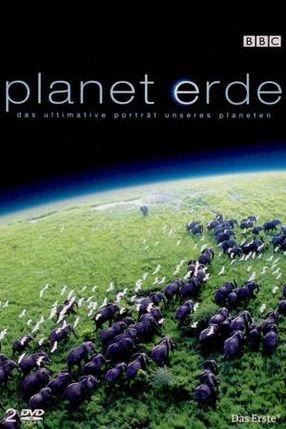 Poster: Planet Erde