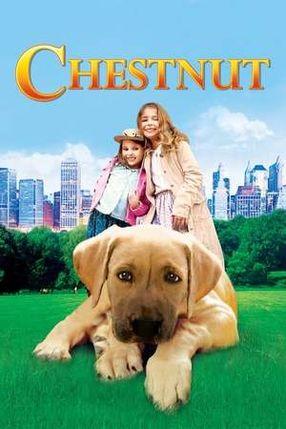 Poster: Chestnut - Der Held vom Central Park