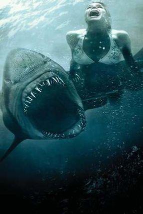 Poster: Shark Night - Das Grauen lauert in der Tiefe