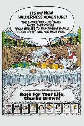 Poster: Lauf um dein Leben, Charlie Brown