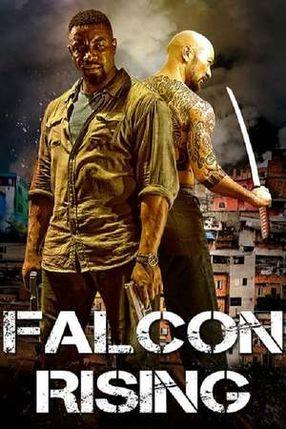 Poster: Falcon Rising