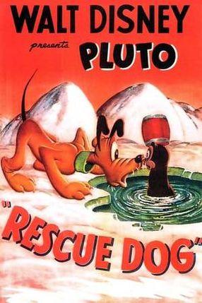 Poster: Pluto der Rettungshund