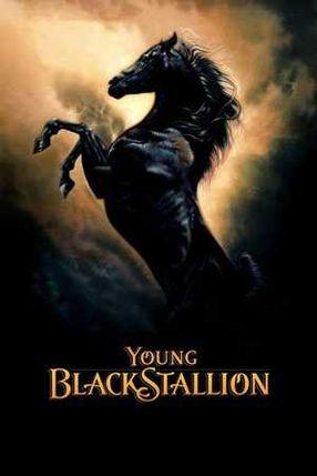Poster: Der schwarze Hengst - Wie alles begann...