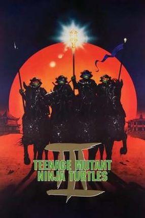 Poster: Turtles III