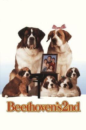 Poster: Eine Familie namens Beethoven