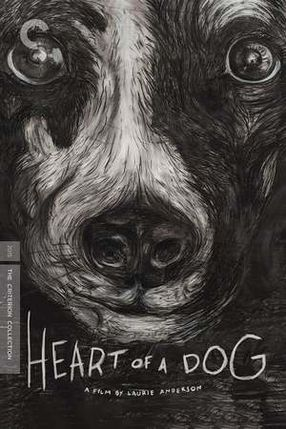 Poster: Heart of a Dog