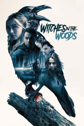 Poster: Witches in the Woods