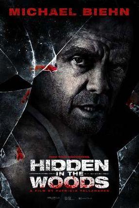 Poster: Hidden in the Woods