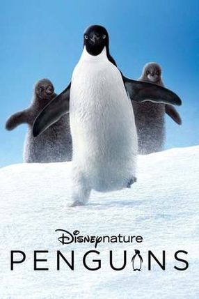 Poster: Pinguine