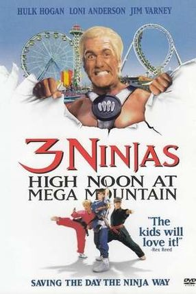 Poster: 3 Ninja Kids - Mission Freizeitpark