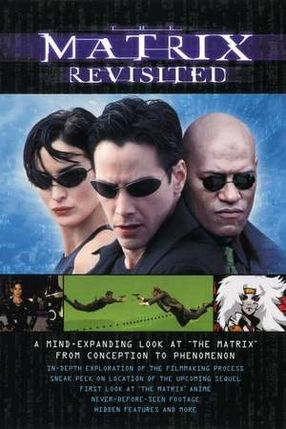 Poster: Matrix - Rückblicke, Einblicke, Ausblicke