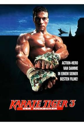 Poster: Der Kickboxer