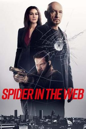 Poster: Spider In The Web