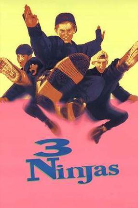 Poster: 3 Ninja Kids