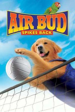 Poster: Air Bud 5 - Vier Pfoten schlagen auf