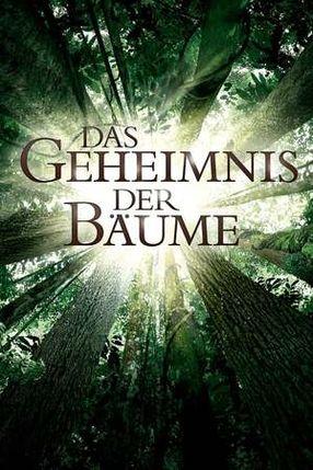 Poster: Das Geheimnis der Bäume