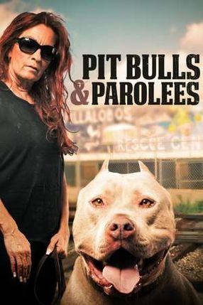 Poster: Pitbulls auf Bewährung