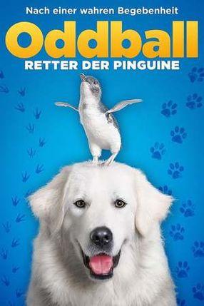 Poster: Oddball - Retter der Pinguine