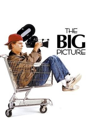 Poster: The Big Picture