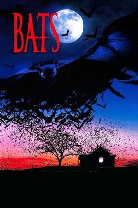 Poster: Bats - Fliegende Teufel