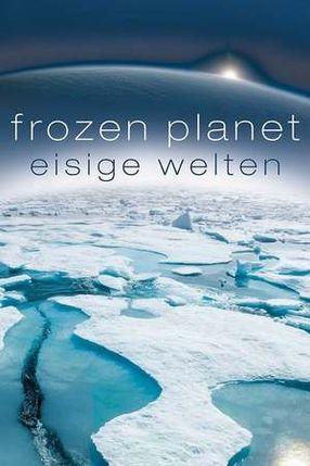 Poster: Eisige Welten
