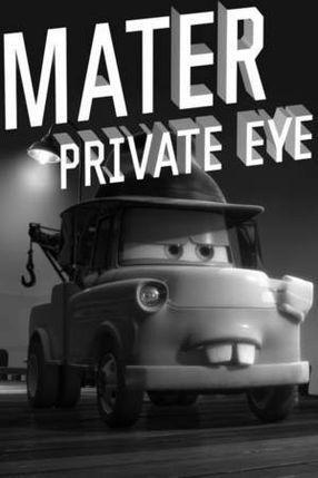 Poster: Detektei Hook