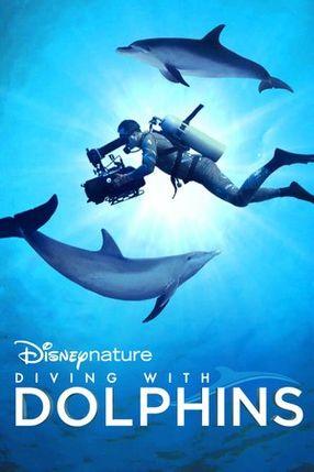 Poster: Die fantastische Welt der Delfine