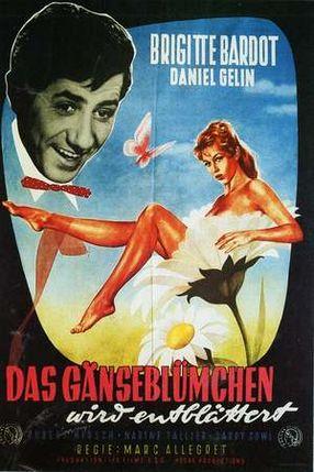 Poster: Das Gänseblümchen wird entblättert