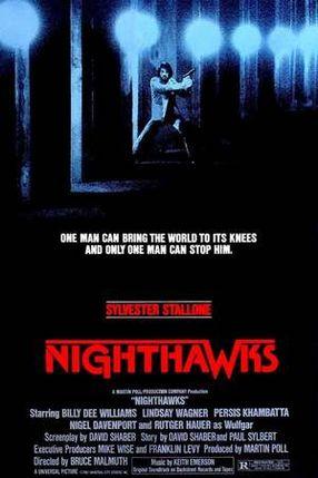 Poster: Nachtfalken
